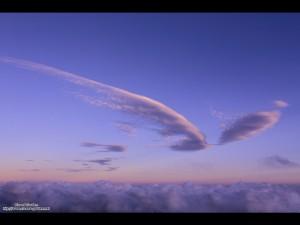 天使の羽根のような雲。こんな素敵な青空を見せてくれた宇宙に感謝